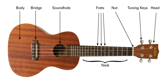 7 Tips To Learn To Play Ukulele Faster